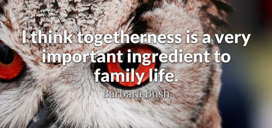 Quotes About Family Sticking Together: 70 Best Inspirational Quotes About Family