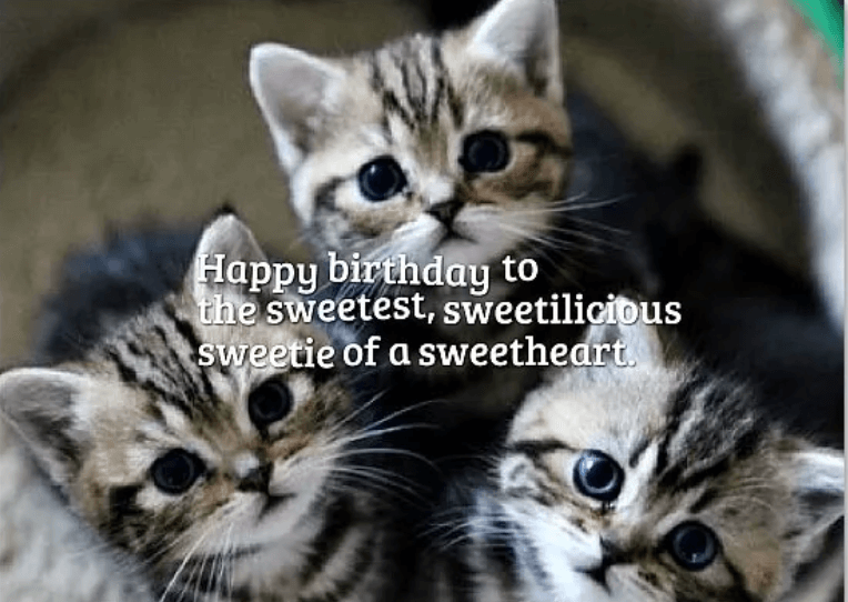 Birthday Quotes And Best Wishes For Girls