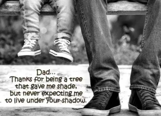 Birthday Quotes For Dad From Son