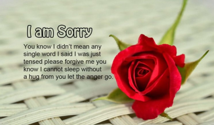 I Am Sorry Love Quotes For Everyone