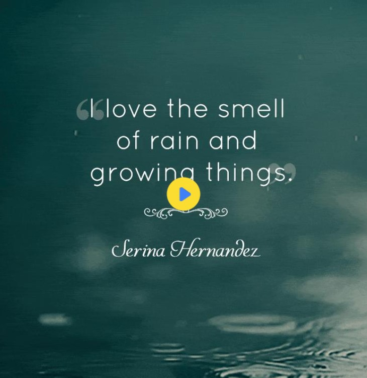 Rain Pictures With Quotes For Facebook