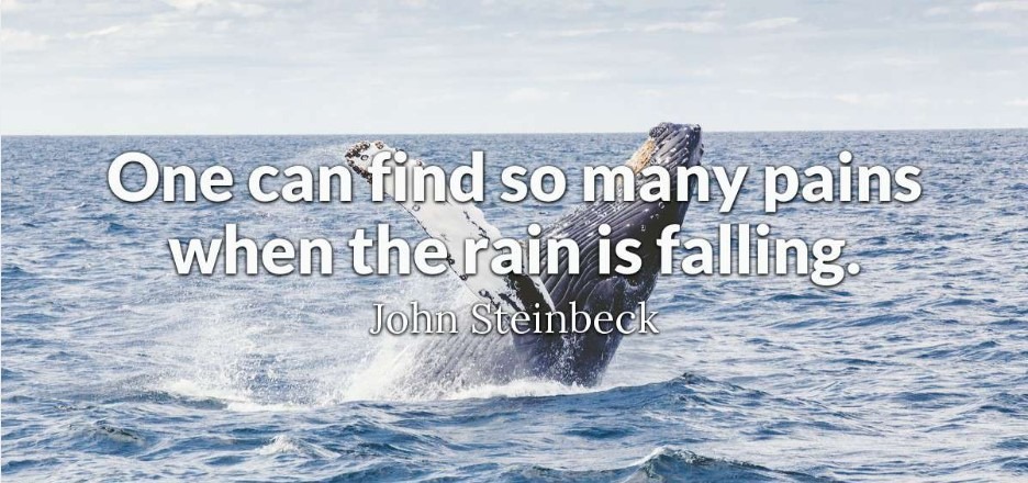 Rainy Day Beach Quotes