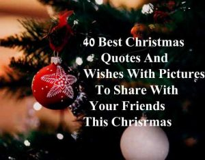 Best Christmas Quotes Wishe