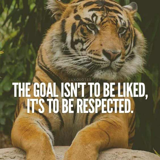 Best Respect Quotes Images Sayings 11
