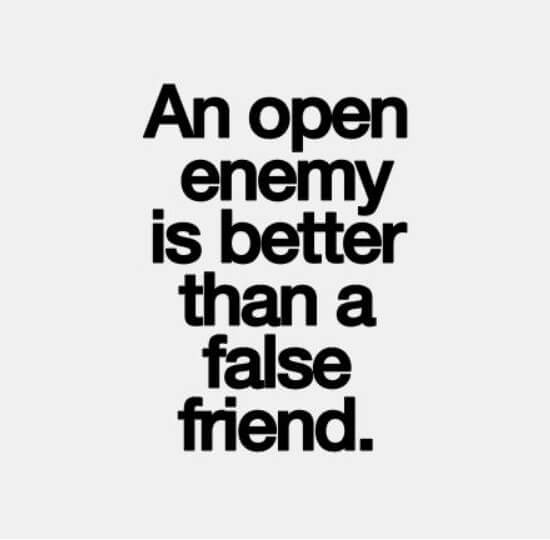 Fake Friends Are Quotes