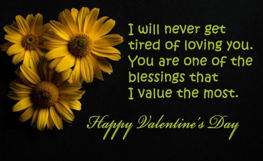 Valentine Day Whatsapp Status Video Download