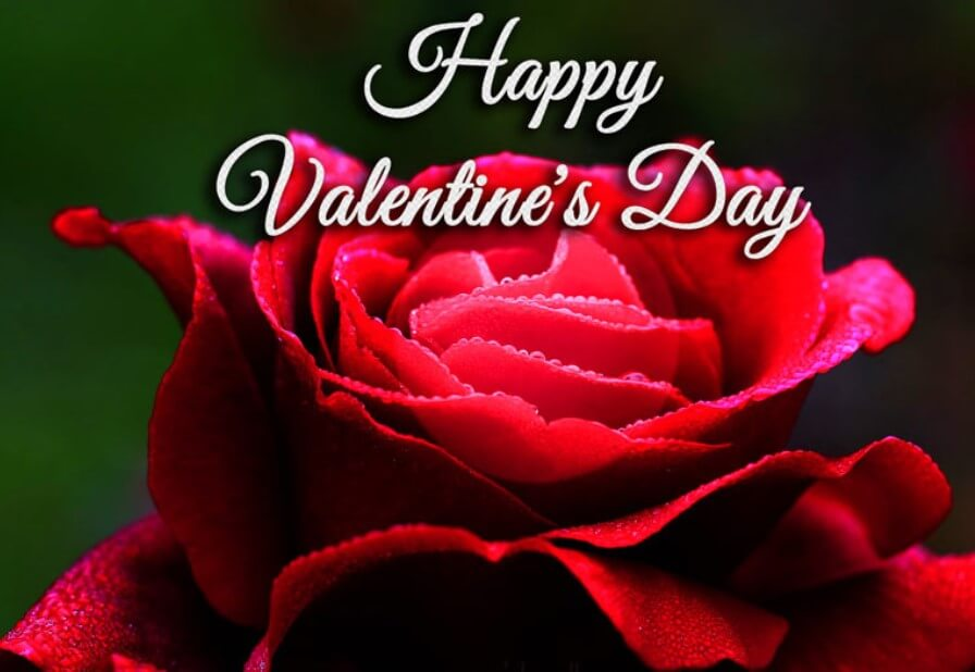 Valentines Day Animated Messages