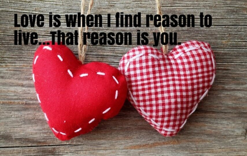 Valentines Day Facebook Status Quotes