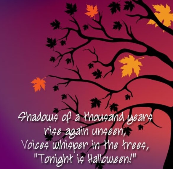 Halloween Drinking Quotes
