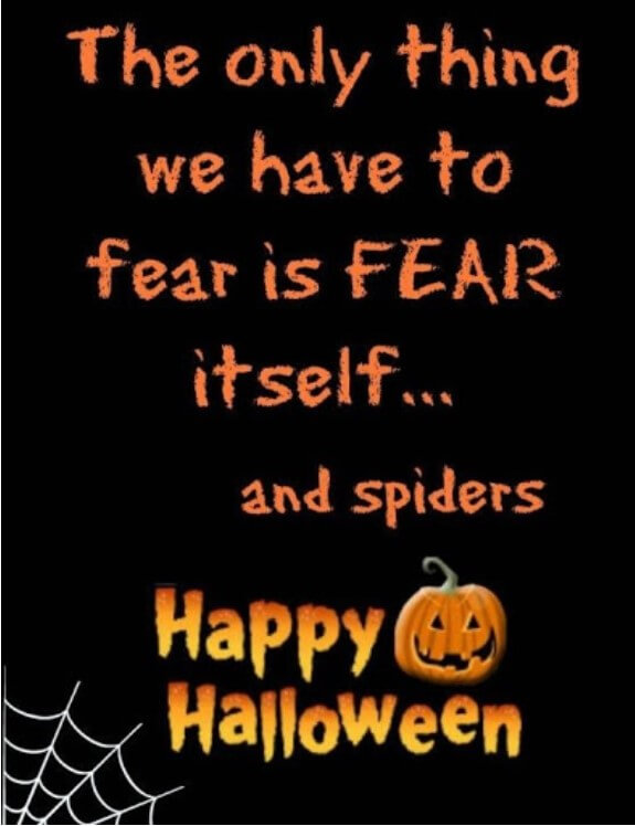 Halloween Quotes Bats