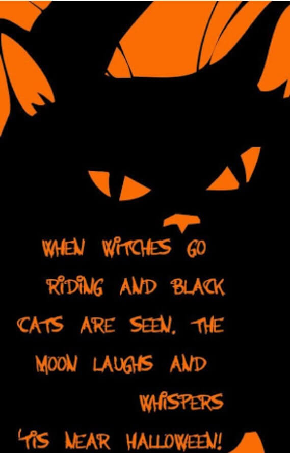 Halloween Quotes Black And White