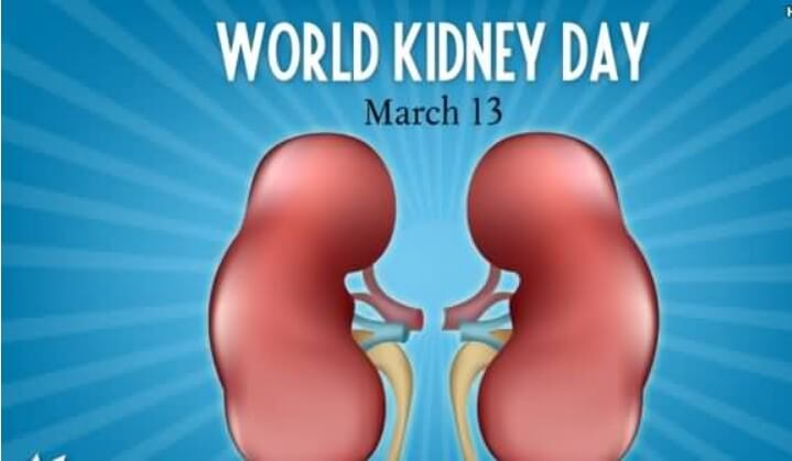 Kidney Cancer Awareness Quotes