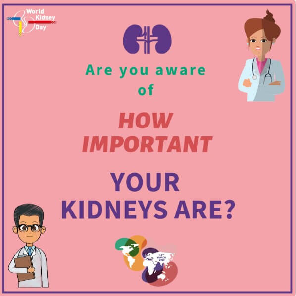 Living Kidney Donor Quotes