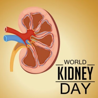 Quotes About Kidney Stones