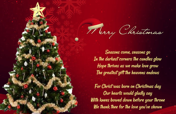 Christmas Quotes And Sayings Funny